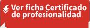 Descargue la ficha del Certificado de Profesionalidad