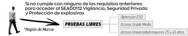 Pruebas libres al SEAD0112 Vigilancia, Seguridad Privada y Protección de personas