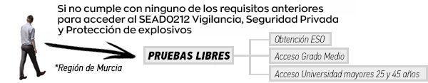Pruebas libres al SEAD0212 Vigilancia, Seguridad Privada y Protección de explosivos